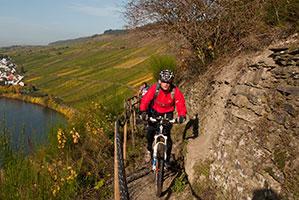 Mountainbiking an der Mosel