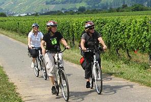 Radfahren entlang der Mosel