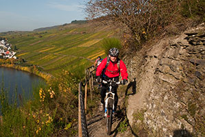 Mountainbiking an der Mosel